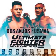 The Ultimate Fighter 28 Finale